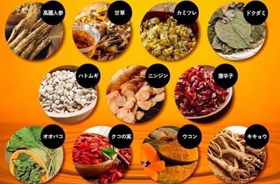 ベルタ葉酸マカプラス成分③和漢植物